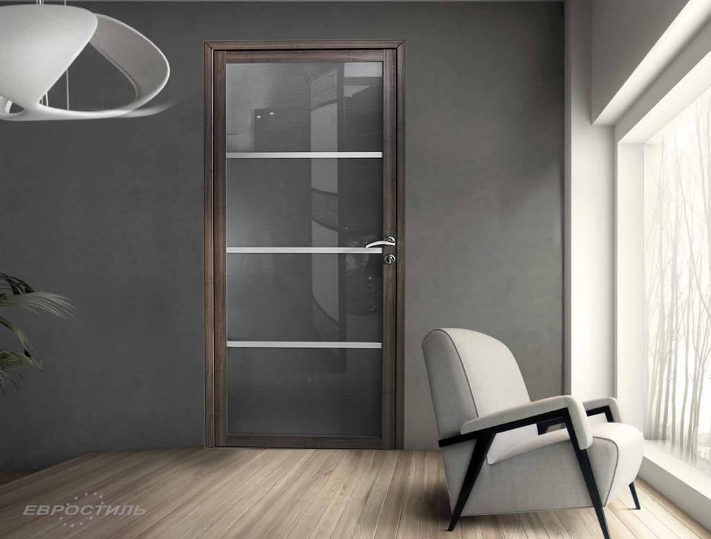 Советы по выбору двери из стекла с раздвижным механизмом, их виды, особенности и преимущества