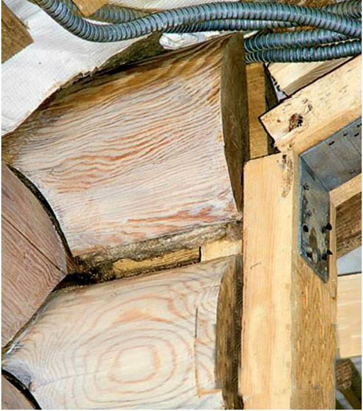 Усадка дома из бревна: нюансы по подготовке и обслуживание сруба
