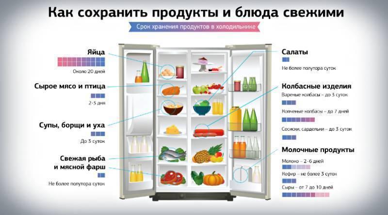 Какая температура должна быть в холодильнике, морозильной камере
