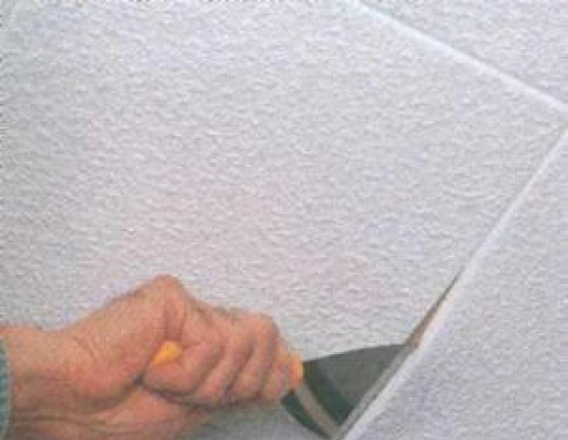Как правильно мыть потолочную плитку на кухне от пыли, жира и копоти