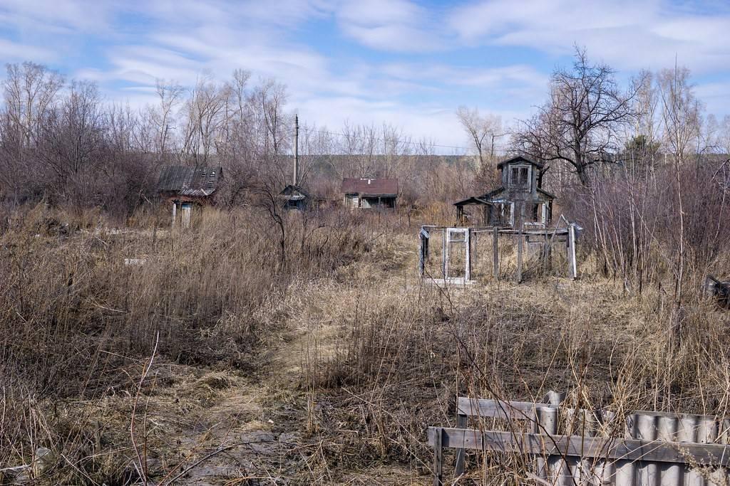 Как в 2020 году оформляется в собственность земельный участок по членской книжке садовода