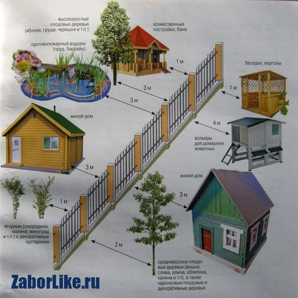 Какие заборы можно ставить между соседями в снт (закон)
