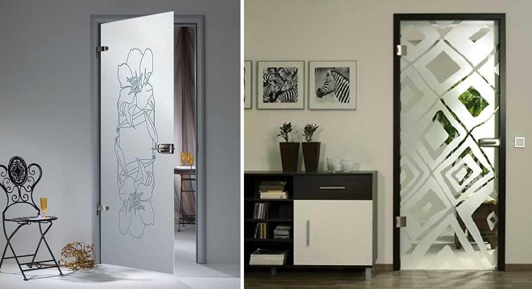 Стеклянные межкомнатные двери (65 фото): виды, модели, какие купить