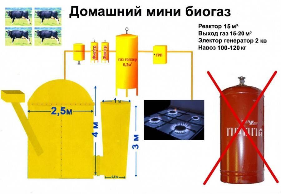 Биогазовая установка своими руками – почему бы и нет? | технологии (огород.ru)