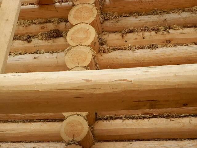 Усадка деревянного дома - статья - журнал