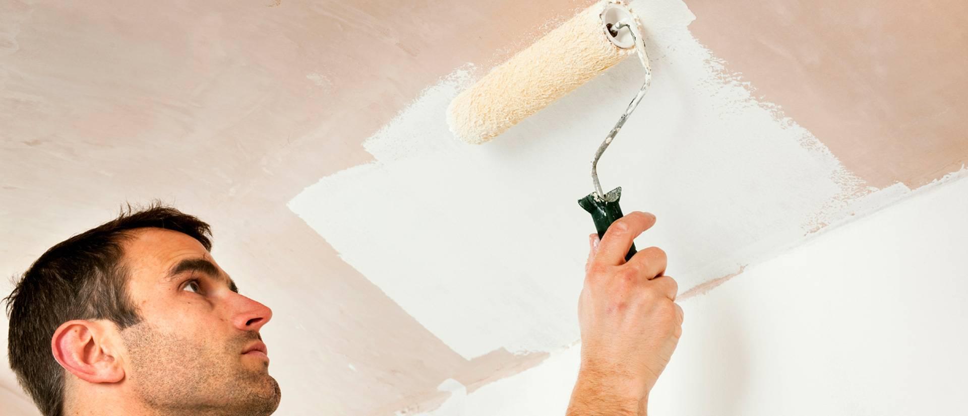 Побелка потолка водоэмульсионной краской своими руками и цена за квадратный метр