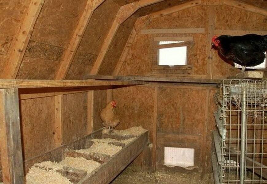 Курятник своими руками на 10-20 кур пошаговая инструкция