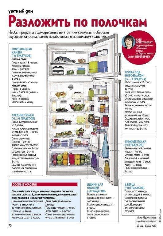 Оптимальная температура в холодильнике и морозильной камере: распределение зон холода