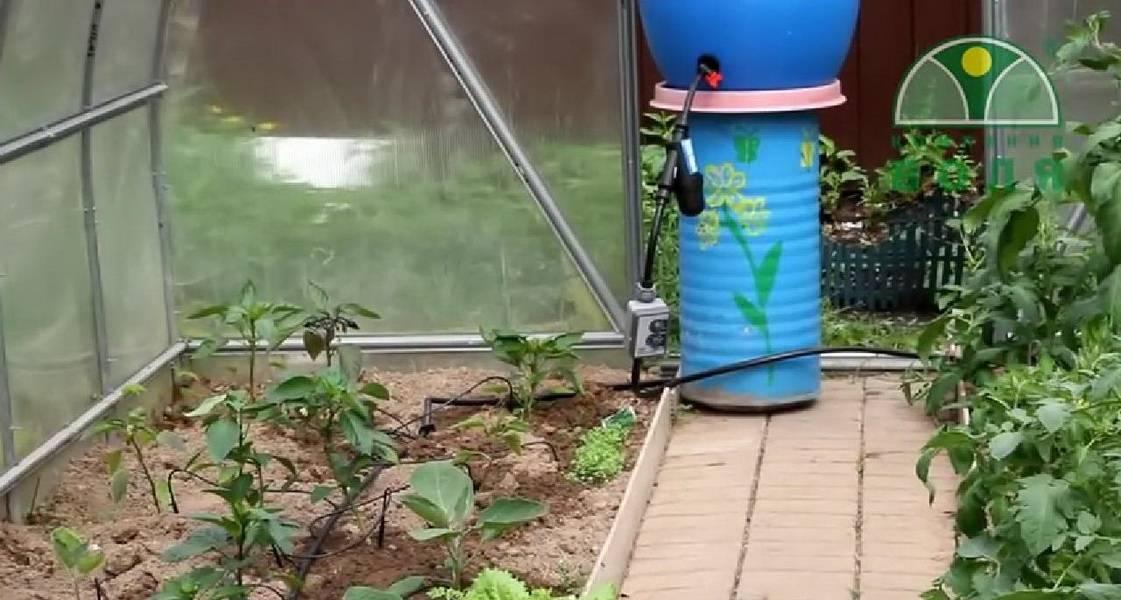Как организовать систему капельного полива из полипропиленовых труб?