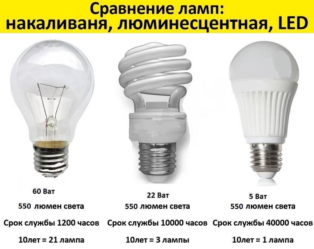 Какие лампочки лучше для дома — светодиодные или энергосберегающие: сравнение и отличия