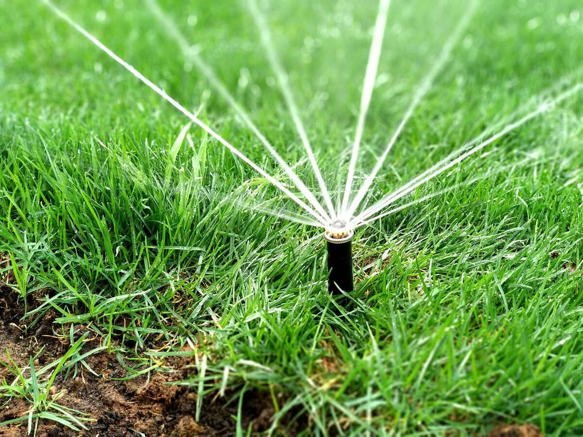 Системы автоматического полива комнатных растений: создание приспособлений для автополива своими руками