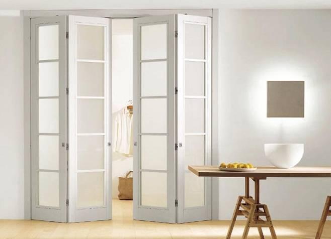 Разновидности дверей-гармошка