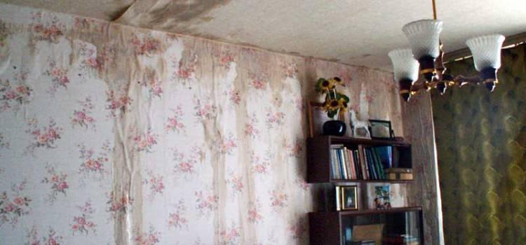 Соседи сверху постоянно заливают квартиру: что делать и куда обращаться