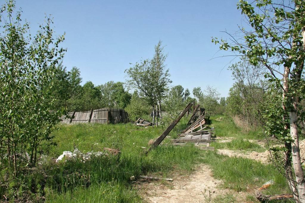 Оформление заброшенного дачного участка в собственность