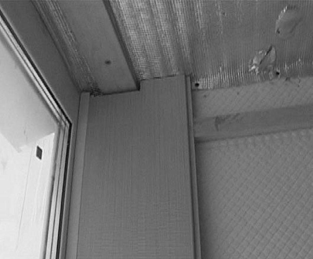 Как обшить потолок пластиком: технология и полное описание от профессионалов