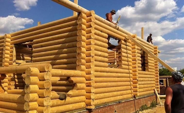 Строительство бревенчатого дома по шагам