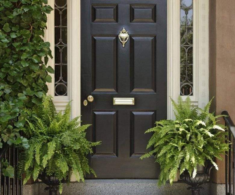 Какую входную дверь лучше поставить в частный дом: подробная информация