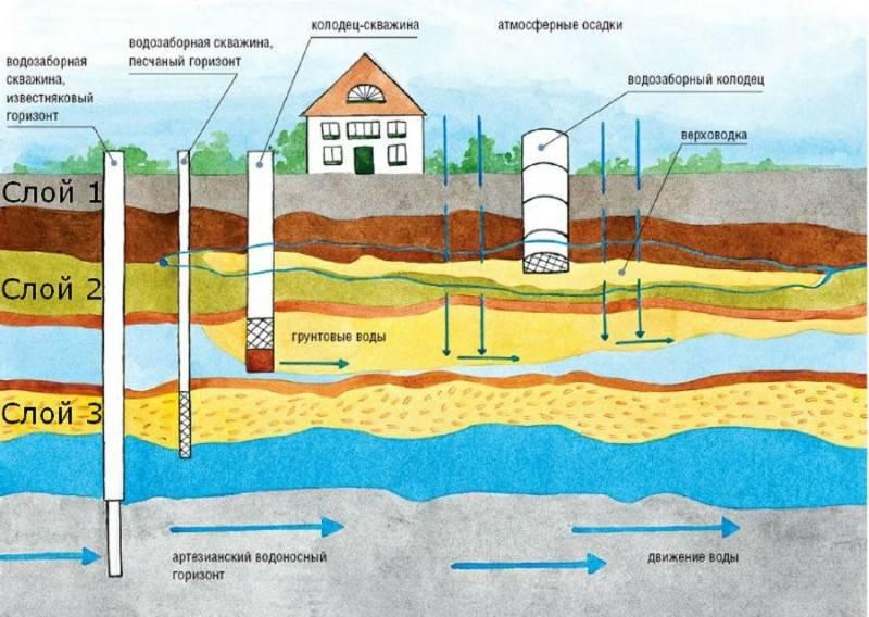 Как найти и проверить воду на участке | полезно (огород.ru)