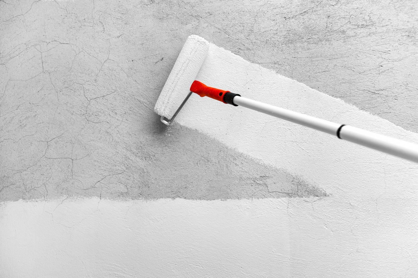 Покраска штукатурки: выбор краски и порядок работ