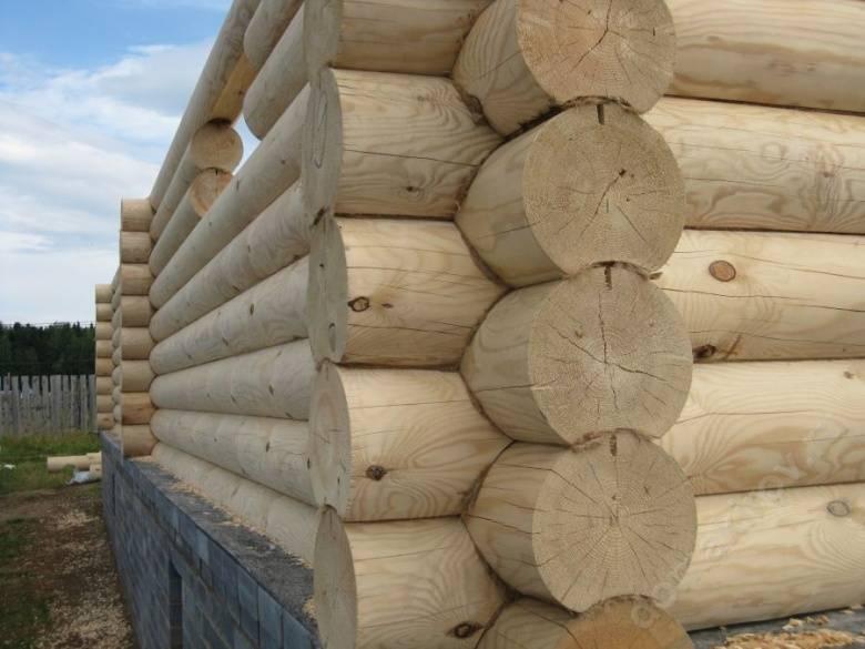 Усадка деревянного дома из оцилиндрованного бревна