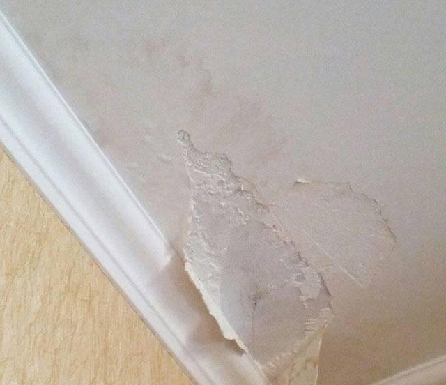 Как сделать качественный ремонт потолка после протечки своими руками