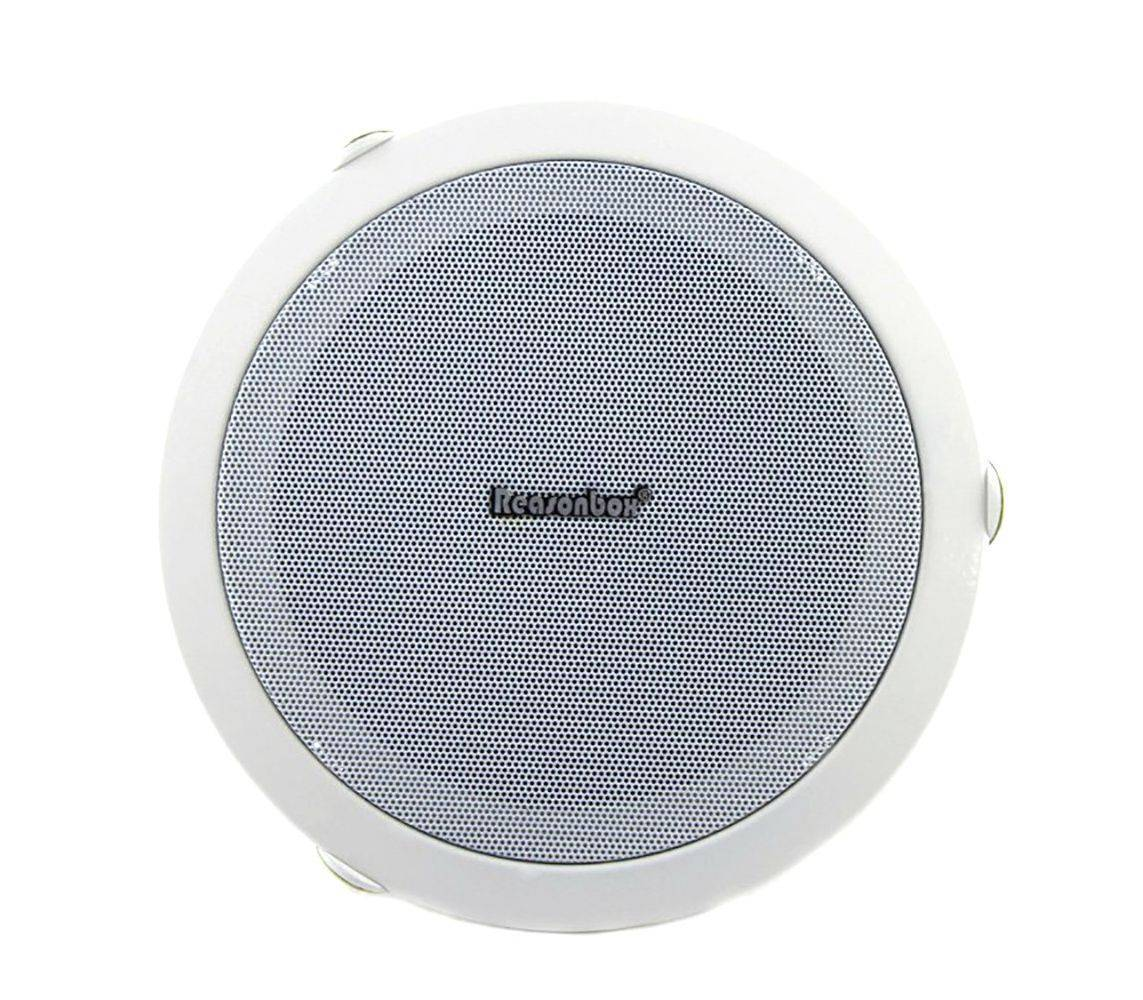 Потолочная акустика для дома: разновидности, особенности выбора