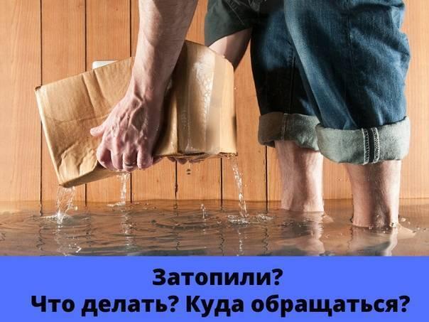 Что делать, если затопили соседей снизу в республике беларусь
